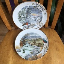2 Peter Banett English Porcelain 1976 Bird Plates Vintage November December - $24.75