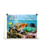 Photo paper poster SEA1-1 - $20.00+