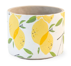 Cute Small Lemon Drop Cement  Flower/Herbs Planter,6.5''Diameter x 5.1/4... - $33.16