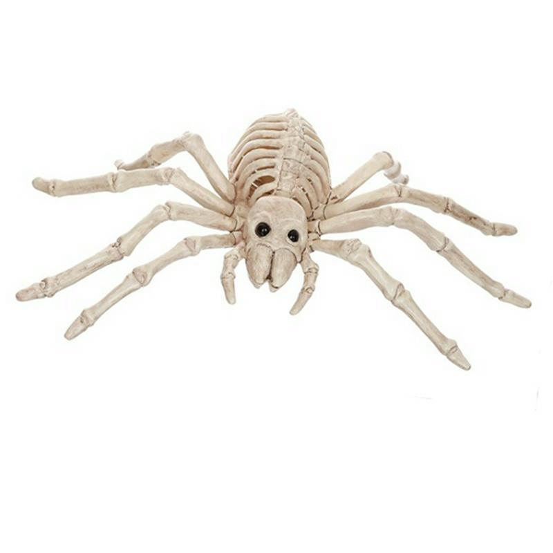Skeleton Spider Plastic Animal Skeleton Bones for Horror Decoration Creepy Props