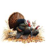 Wild turkey pair cross stitch pattern thumbtall