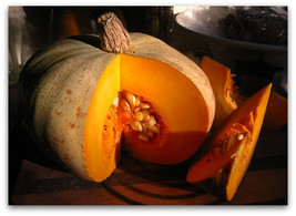 10 Sweet Meat Squash Seeds 2019 ( Non-Gmo Free Shipping! ) - $5.12