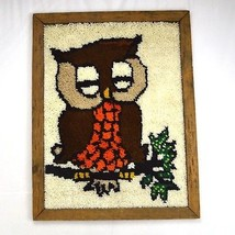 Vtg 70s Owl Boho Finished Latch Hook Framed Textile Knit Tapestry Wall A... - $44.54