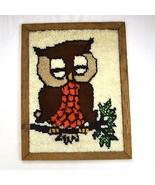 Vtg 70s Owl Boho Finished Latch Hook Framed Textile Knit Tapestry Wall A... - $44.54