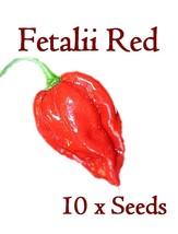 10x Semi Di Peperoncino Fetalii Rosso 10 Raro Semi Capsicum Chinence Grasso - $16.90