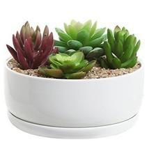 6 inch Modern White Ceramic Round Designer Succulent Planter / Cactus Pot / - $21.49