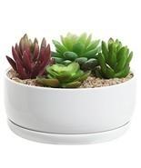 6 inch Modern White Ceramic Round Designer Succulent Planter / Cactus Pot / - $402,78 MXN
