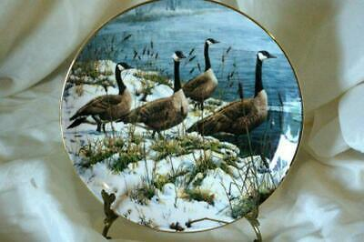 Hamilton Collection 1988 Among The Cattails Collector Plate In Box - $7.19