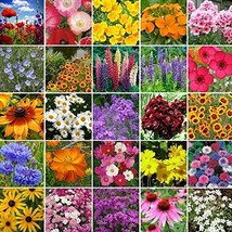 Non GMO Bulk Northeast Wildflower Seed Mix (5 lbs) - $278.14