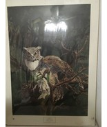 Great Horned Owl Bruce Lattig  - $198.00