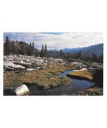 Sequoia National Park Mosquito Creek Carr Clifton for Sierra Club Photo Postcard - £7.73 GBP