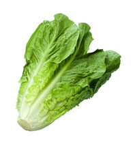 Lettuce Romaine Parris Island Cos Non GMO Heirloom Vegetable Seeds Sow No GMO® - $1.97+