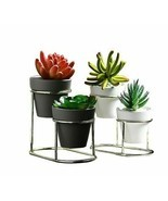New Iron Frame Ceramic Green Flower Pot Automatic Drainage Table Top Met... - $30.00 CAD
