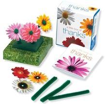 A Little Box of Thanks (Ubox Kits) Ariel Books - £2.94 GBP