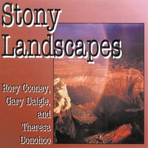 STONY LANDSCAPES by Rory Cooney