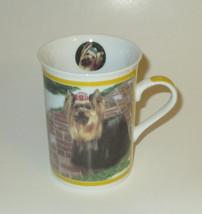 Yorkie Coffee Cup Mug Yorkshire Terrier Porcelain Walk in the Park Danbu... - $20.78