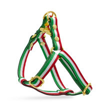 Dog Step In Harness Adjustable Italian Italy Flag Leash Set Gold Metal H... - £26.82 GBP+