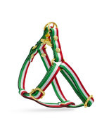 Dog Step In Harness Adjustable Italian Italy Flag Leash Set Gold Metal H... - $37.52+