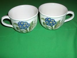 2 Noritake  China Coffee Tea Cups Primula Gourmet Garden Casual Gourmet ... - $24.74