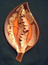 Mid Century Modern Ceramic Glaze Ashtray Leaf Shape Circa 1960's - te - $18.53