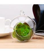 Terrarium Ball Globe Shape Plants Container Ornament Home garden Decor - $2.99