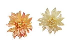 Orange & Cream African Daisy Hair Pins Wedding Hair Clips