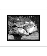 Cuban Crocodiles Pen and Ink Print, Reptile - $24.00
