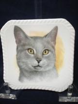"Vintage Royal Adderley Floral 4"" Bone China Trinket Dish Gray Cat England - $11.88"
