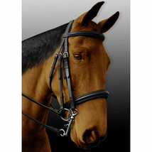 PI010BK-F English Dressage Bridle Padded Extremely Comfortable W/ Reins Size Cob - $109.99