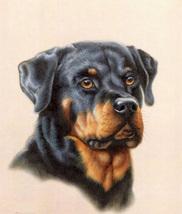 RottweiLer Dog Cross Stitch Pattern***LOOK*** - $4.95