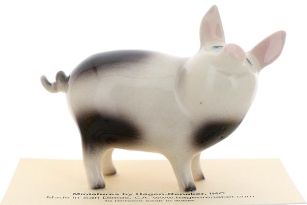 Pigs15