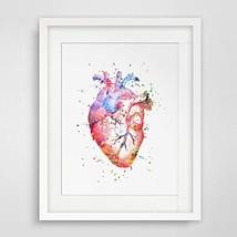Watercolor Anatomy Heart Images Vintage Graphics Art Print Anatomy Wall ... - $30.99