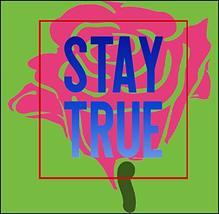 Top Shelf Novelties Stay True Motivating Inspirational Outdoor/Indoor La... - $8.77