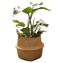 RISEON Natural Seagrass Belly Basket Panier Storage Plant Pot Collapsibl... - $24.39 CAD