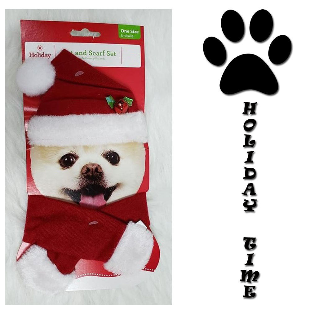 NEW ~ Holiday Time Dog Cat Red Santa Hat & Scarf