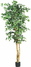 Nearly Natural 5209 Ficus Silk Tree, 6-Feet, Green - $85.64