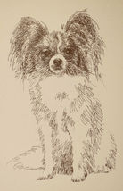Papillon Dog Breed Art Print #47 Word Drawing Kline will add your dogs n... - $49.95