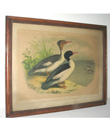 ANTIQUE VICTORIAN HUNTING DUCKS CHROMOLITHOGRAPH PRINT in LOVELY WOODEN ... - $125.99