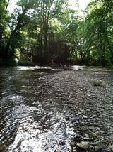 Photograph Chattahoochee River Helen GA - $9.95