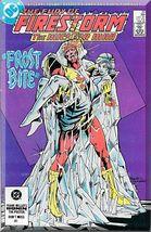 The Fury Of Firestorm #20 (1984) *Copper Age / DC Comics / Killer Frost* - $3.00