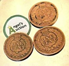 Indian Head Penny 1899, 1900, and 1901 AA20-CNP2135 Antique image 7