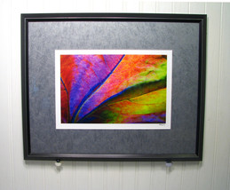 Kavan Geary Fine Photographic Art Framed Signed Photograph Colorful Nature - $59.00