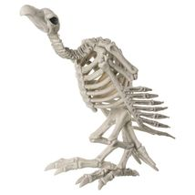 10.5 Inch Vulture Crazy Bones Halloween Skeleton Spooky Poseable Prop - €20,54 EUR