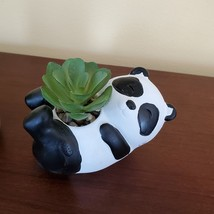 "Panda Animal Planter with Faux Succulent, Cement Pot and Artificial Plant, 4"""