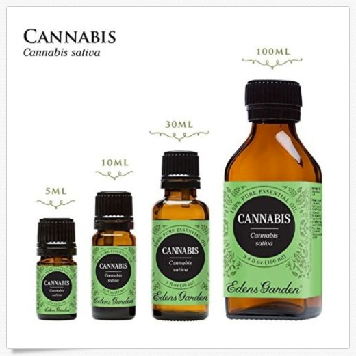 Cannabis 100% Pure Therapeutic Grade Essential Oil 10 ml Pain Muscle Relief Oils