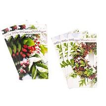 Hallmark Christmas Money or Gift Card Holder Assortment, Wreath and Berr... - $10.68