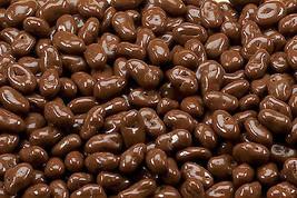 Sugar Free Milk Chocolate Raisins, 5LBS - $46.66