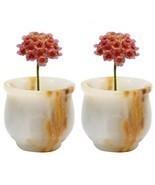 Succulent Pot Mini Portable Indoor And Outdoor Marble Terra Cotta Succul... - $16.51