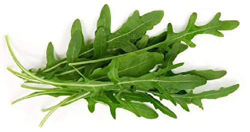 Sow No GMO Arugula Salad Rocket Roquette Rucola Rugula Wild Child Italian Lettuc - $2.54