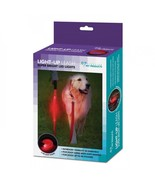 Light Up Dog Leash 5 FT Lighted LED 3 Modes Pet Walking Strap Red Polyes... - $19.30